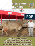 Boletu00EDn Brown Swiss STUDIO