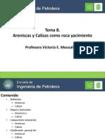 mousalli_Tema 8. Areniscas y calizas como yacimiento.pdf