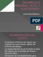 DESARROLLO EMBRIONAL, FETAL Y PLACENTARIO SEMINARIO.pptx
