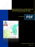 Tese_EpidemiologiaEspacialSorologica.pdf