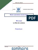 fibre de carbone mini projet.docx