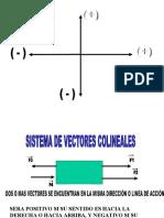 TIPOS DE VECTORES (1)