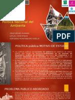 POLITICA NACIONAL DEL ESTADO.pptx