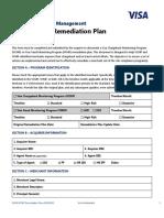 Modelo - plano de ação - VISA