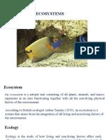 Ecosystem new.pptx