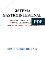 6. Fase del intestino delgado 2.pdf