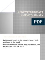 Kegawatdaruratan genitourinary2