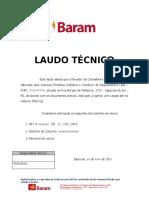 LAUDO TÉCNICO CAPACIDADE_ELEVADOR