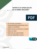 PLAN NACIONAL DE SALUD MENTAL 2014-2021