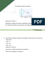 Ficha Preparação teste Fevereiro 8º.docx