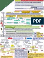 346909756-Esquemas-Nueva-LPAC-Vertical.pdf