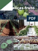 1585341599Hortalicas-fruto