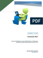 E2 Director 2017