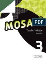 Mosaic 3 Teachers Guide