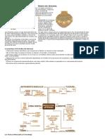 001 Evolucion historica de la Producción.pdf