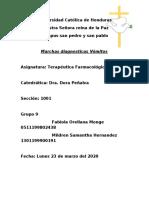 Marcha Diagnostica vomito grupo 9.docx
