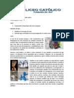 Segunda guía  de IPE para grado cuarto