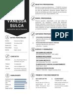 Curriculum_Vanessa Sulca B