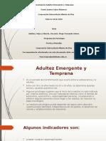 Presentación Adultez Emergente y Temprana (1)