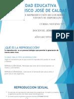 EXPOSICION TIPOS DE REPRODUCCION DE LOS SERES VIVOS Y SU IMPORTANCIA