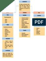 mapa concemptual historia de impuestos.docx