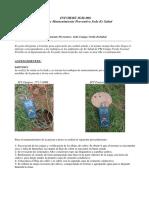 INFORME  CAMPO VERDE.pdf
