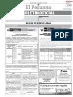 EL Peruano Boletin 20190729.pdf
