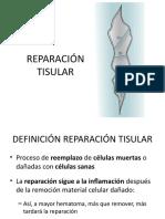 reparacion tisular