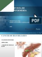 Revista de Enfermeriapaciente Oncologico
