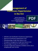 pulmonary Hypertension in Intensive Care Unit