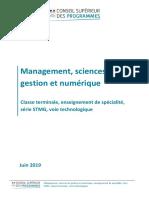 Tle_STMG_SMGN_Specialite_Voie_T_1136981 TERMINALE MANAGEMENT.pdf