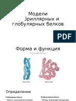 глобуллярные и фибриллярные белки.pptx
