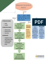 mapa conceptual formulacion y evaluacion de proyecto.docx