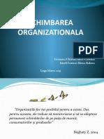 schimbarea-organizationala.pptx