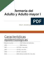Enfermeria del Adulto y Adulto mayor I IPL