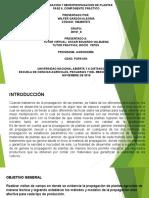 FASE 6. TRABAJO PRACTICO- WILFER GARZON ALEGRIA