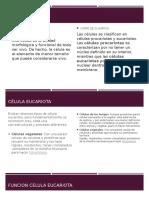LA CELULA Y VIRUS.pptx