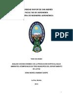 SOCIO ECONOMICO.pdf