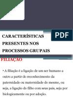 Cópia de AULA 05 - CARACTERÍSTICAS PRESENTES NOS PROCESSOS GRUPAIS