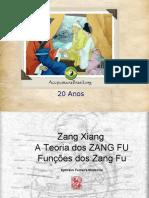 ZANG FU TEORIA DE BASE