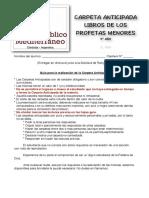 IBM-ANTICIPADA-3-AÑO-PROFETAS-MENORES.pdf