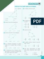 Ficha_de_trabajo_razones_trigonométricas_de_un_ángulo_agudo_en_un_triángulo (1).pdf