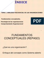 Analisis psicosocial de las organizaciones