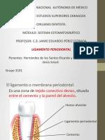 4.2.6 ligamento periodontal 2.pdf