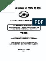 Tessis E Segura Tanta.pdf
