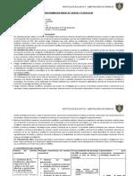 Programacion Anual 2020 5º Ct Copia Por Corregir