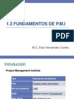 1.3 Fundamentos PMI.pdf