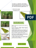 STUDY OF BIOLOGICAL AGENTS AND UREA FERTILIZER ON.pptx