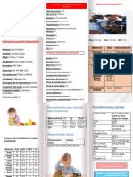 folleto (trabajo final).pdf