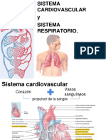 Sistema Cardiovascular y Sistema Respiratorio 2018